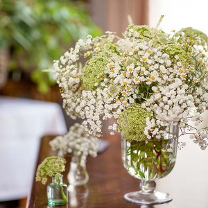 Mrs Umbels, Nottinghamshire