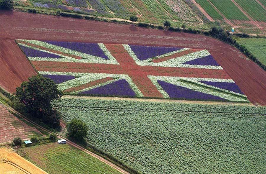 Union Jack Confetti Field