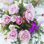 The Carriage Hall Wedding Fair | Sunday 19th November