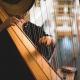 Notts Harpist